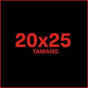 Ampliaciones 20x25
