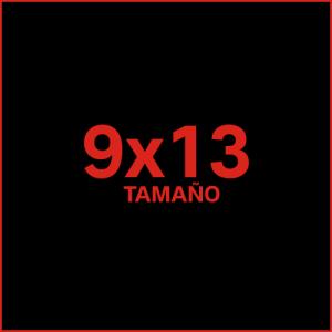 Fotos estándar 9x13